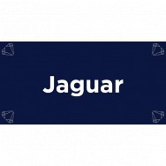 Image for Jaguar