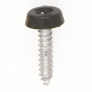 "Image for Black Fixed Head 1"" Self Tapping Screw"